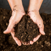 Your Simplified Composting Guide: Everything You Need To Know About Organic Composting
